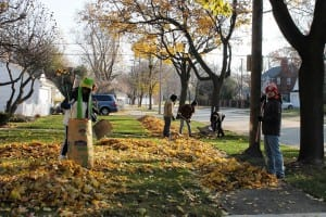 Photo courtesy of the city of Dearborn. Put leaves in paper yard waste bags or approved containers on trash day to ensure pickup every week. As an alternative, loose leaf collection takes place on a neighborhood's trash day during a non-recycling week, but it may take several non-recycling weeks to complete a whole district. Go to www.cityofdearborn.org for a map and anticipated schedule for loose leaf collection.