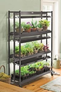 Photo courtesy of Gardener's Supply Co. Using a combination of artificial and natural light helps plants better tolerate the less-than-ideal indoor growing environment.