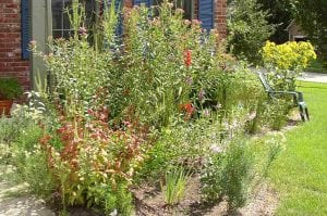 Photo courtesy of the city of Dearborn Grants of up to $1,000 are available to Dearborn residents who put in rain gardens and help protect the Rouge River watershed.