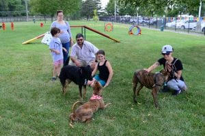 Photo courtesy of the city of Dearborn Annual permits to use the city of Dearborn dog park expire at 5 p.m. Feb. 28.